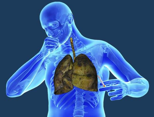 Курение нарушает работу дыхательной системы