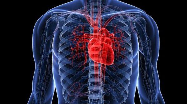 Курение повышает риск заболеваний сердца
